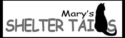 Marys Shelter Tails link banner